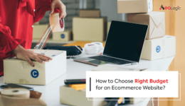 Right Budget for an Ecommerce Website