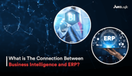 Business Intelligence and ERP